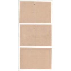 NOTGELD - MUHLHAUSEN - 3 different notes - WALTER - RARE (M081)