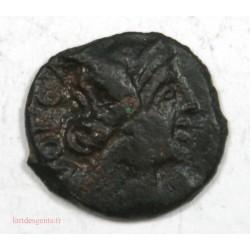 NIMES –Tête Apollon - Bronze au démos – VOLQUES ARECOMIQUES -