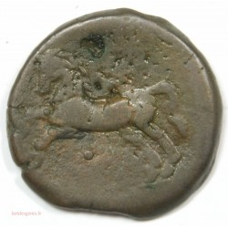 NUMIDIE, MASSINISA unité de Bronze 200-150 av J.C.