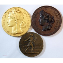 3 jolies médailles Agriculture, apprentissage du gard (bronze et doré)