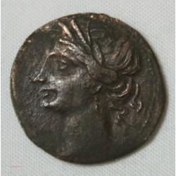 CARTHAGE - ZEUGITANIE  Shekel bronze 264-241 av JC