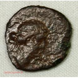 GAULOISE - bronze semis de cavaillon COL/ CABE