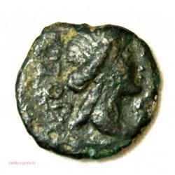 NIMES – Bronze au démos – VOLQUES ARECOMIQUES -