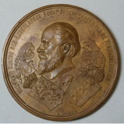 Médaille Willem III Koning der Nederlander - Koloniale 1883 - A.FISCH