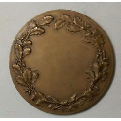 Médaille A. BEERNAERT MINISTRE D ETAT 1910 (BELGIQUE), par C. DEVREESE