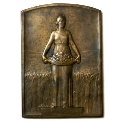 Médaille Plaque Bronze, Comptoir de l' Azote attribué
