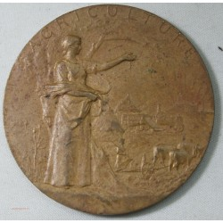 Médaille Agriculture en Bronze 50mm 46 grammes