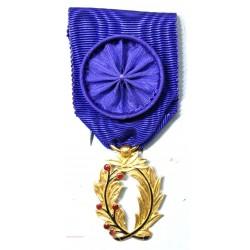 Médaille palme académique superbe + rosette
