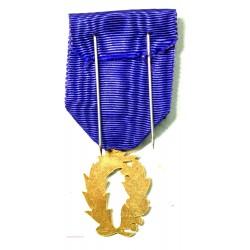 Médaille  palme académique superbe