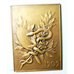 Médaille  plaque bronze  DR. E. DESNOS par F. VERNON