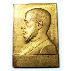 RARE Médaille plaque Charles Nicolas SEBLINE sénateur Aisne par ABEL LA FLEUR