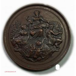 Medaille cuivre sté Agriculture à BAR-LE-DUC (Meuse) attribué 1882