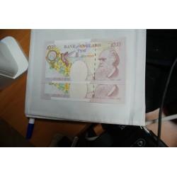 Bank of England 2 x 10 pounds Charles DARWIN neuf UNC, lartdesgents.fr